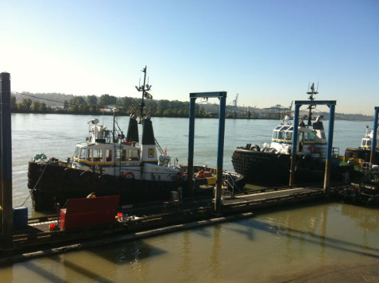 Tugboats docked in front of New Westminster's River Market. Carolyn Ali photo.