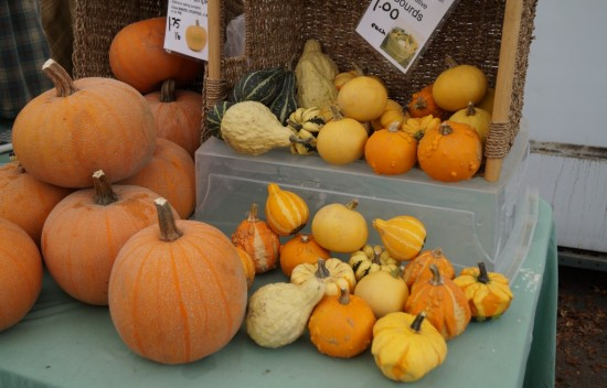 Farmer's Market| Things To Do In Vancouver This Weekend