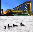 The Fairmont Vancouver Airport goes to the birds with their new