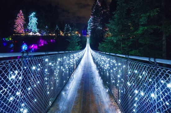 Photo sourced from Capilano Suspension Bridge