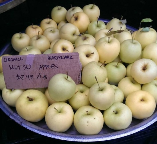 Hastings Park Farmers Market | Things To Do In Vancouver This Weekend