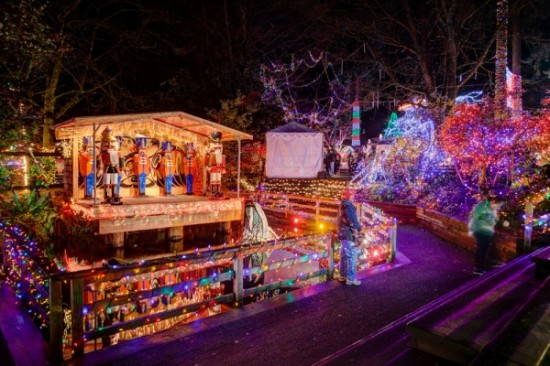 Bright Nights at Stanley Park | Things To Do In Vancouver This Weekend