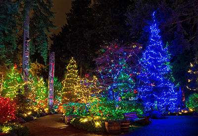 Outdoor Christmas Reindeer Lights