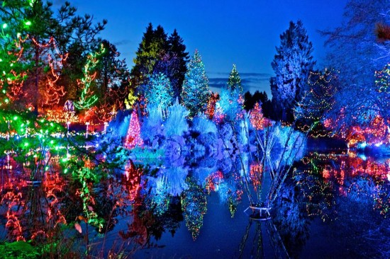 VanDusen Botanical Gardens - Festival of Lights   Things To Do In Vancouver This Weekend