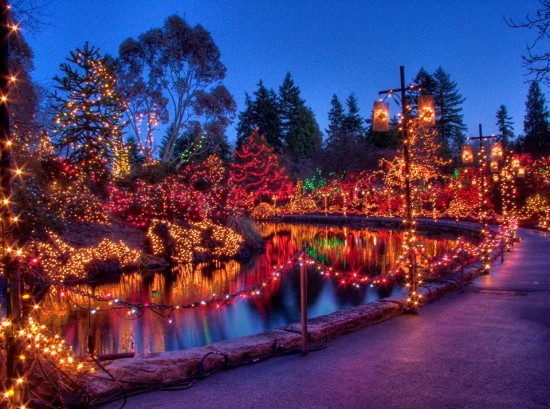 VanDusen Botanical Gardens - Festival of Lights | Things To Do In Vancouver This Weekend