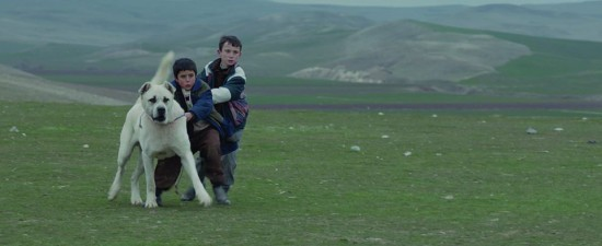 1st Annual Vancouver Turkish Film Festival - Sivas   Things To Do In Vancouver This Weekend