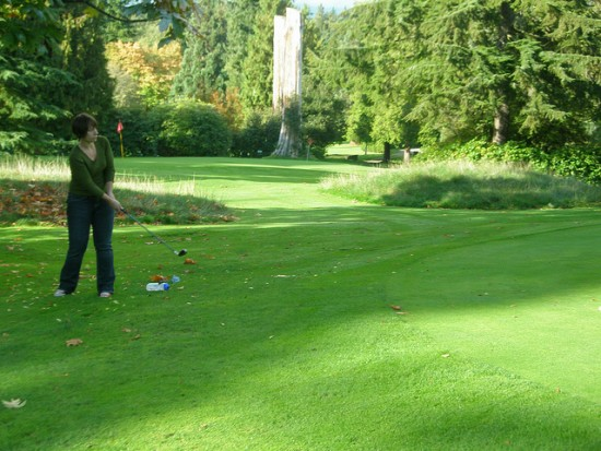 Vancouver pitch n putt golf