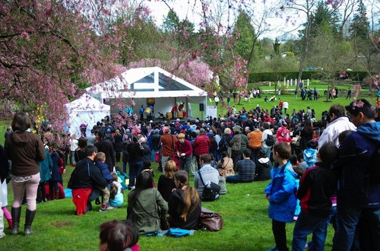Majomo Photography Vancouver cherry blossom festival