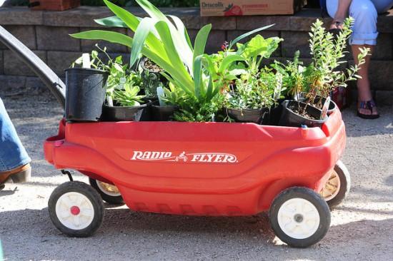 Van Dusen Plant Sale 2016