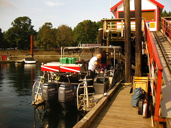 Getting ready for a dive at Horseshoe Bay. Photo: Stephen Pearce