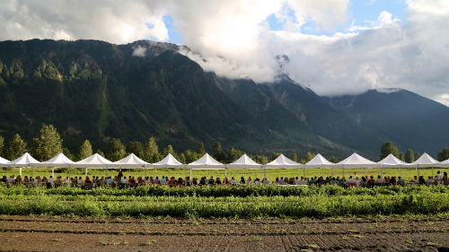 Araxi's longtable at Pemberton's North Arm Farm | Photo credit Toshi Kawano