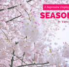 SeasonsVancouver