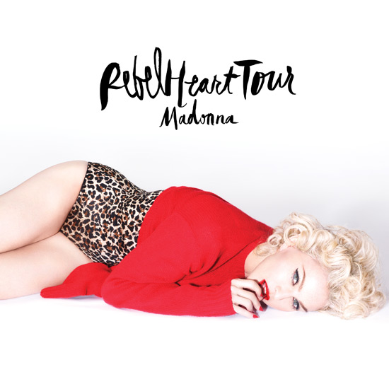 Madonna_Logo_Photo_Lockup_H