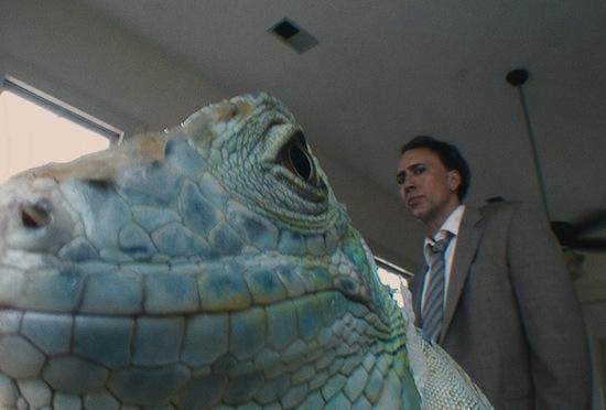 bad-lieutenant-nicolas-cage-iguana