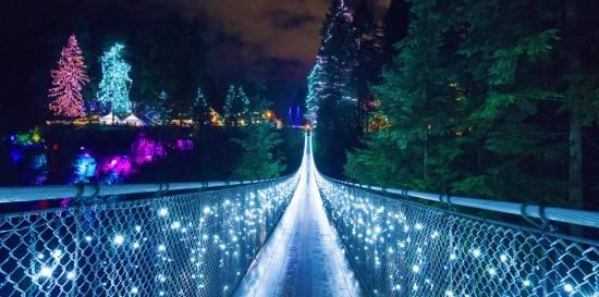Canyon Lights
