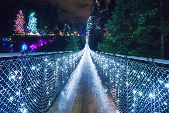 canyon lights capilano suspension bridge