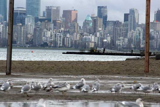 Discover-Outdoors-Spanish-Banks-Vancouver5