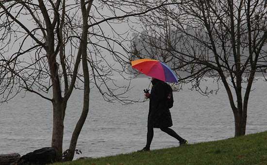 Discover-Outdoors-Umbrellas-at-Kits4