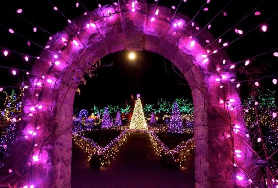 VanDusen Festival Lights