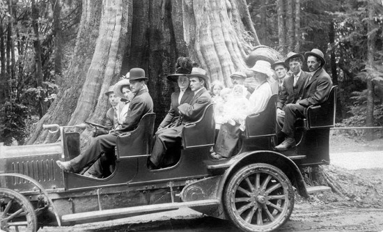 Historic Stanley Park: From British Enclave to Urban Oasis Walking Tour