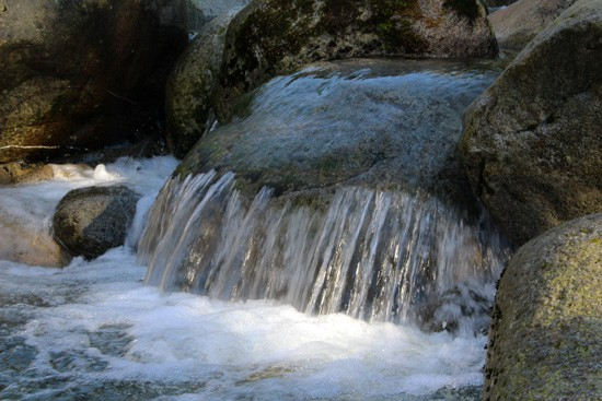 Discover-Outdoors-Lynn-Canyon4