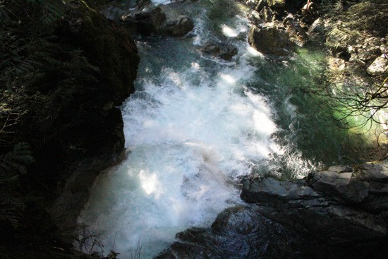 Discover-Outdoors-Lynn-Canyon7