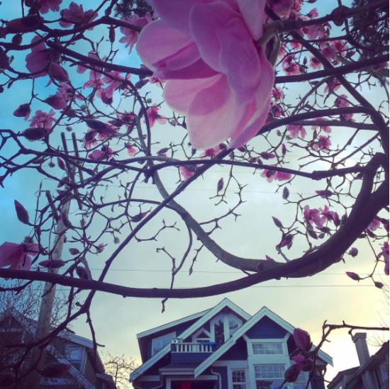 @gwenbarlee | Instagram