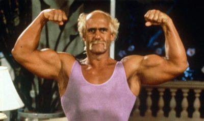 Hulk Hogan Mr. Nanny