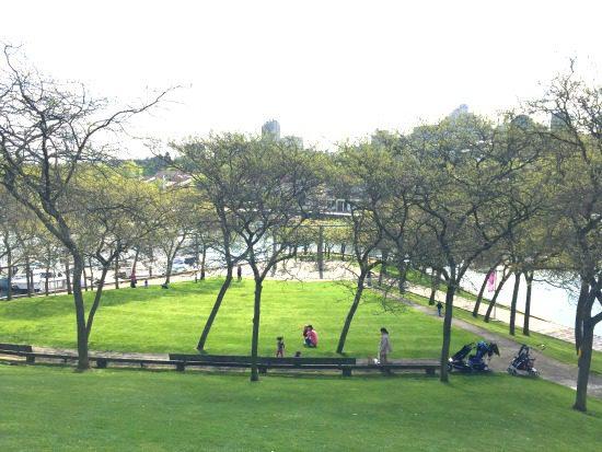 Ron Basford Park | Photo: Bianca Bujan