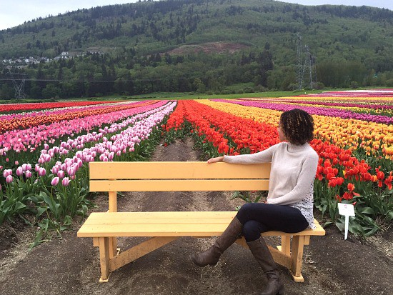 Abbotsford Tulip Festival | Photo: Bianca Bujan