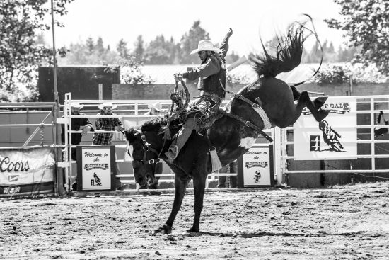 Black and White cowboy on horse