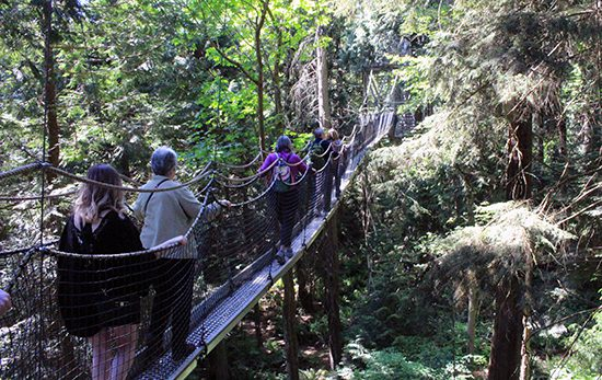 Discover Outdoors Greenheart TreeWalk6