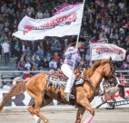Rodeo Flags on Horses