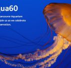 Enter the Celebrate #vanaqua60 photo contest by uploading your favourite Aquarium photos