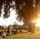 Outdoor yoga vancouver 2017
