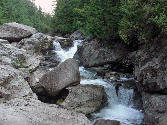 Discover Outdoors Widgeon Creek8