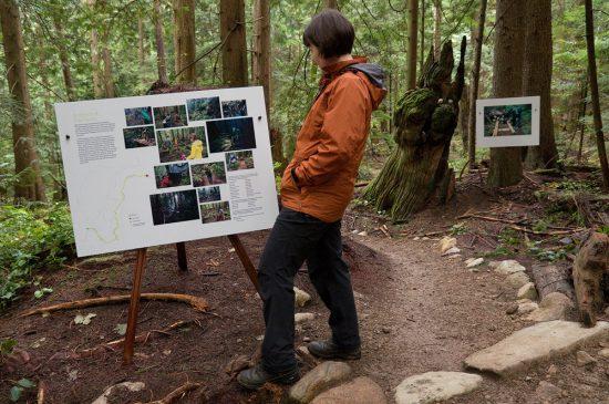 Evidence of Trail Fairies