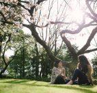 nitobe-memorial-garden