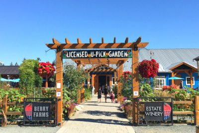 Krause Berry Farms | Photo: Bianca Bujan