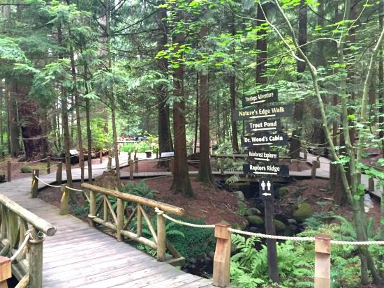 Nature's Edge Walk, Capilano Suspension Bridge Park | Photo: Bianca Bujan