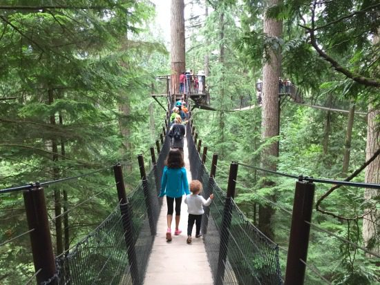 Treetops Adventure | Photo: Bianca Bujan