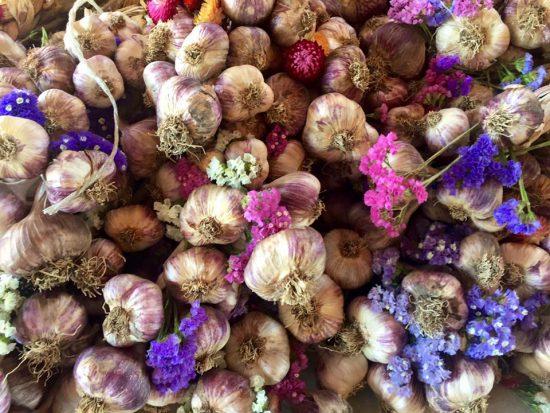 garlic festival vancouver 2016