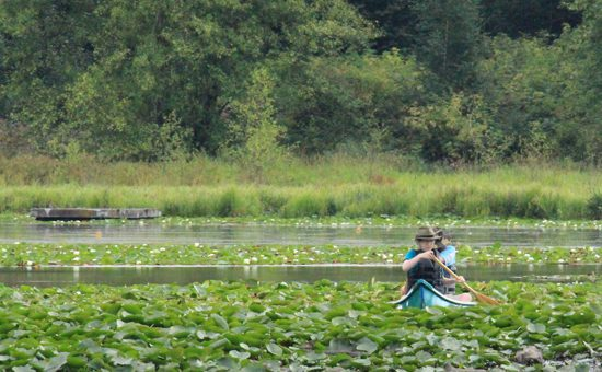 burnaby-lake-park-discover-the-outdoors10