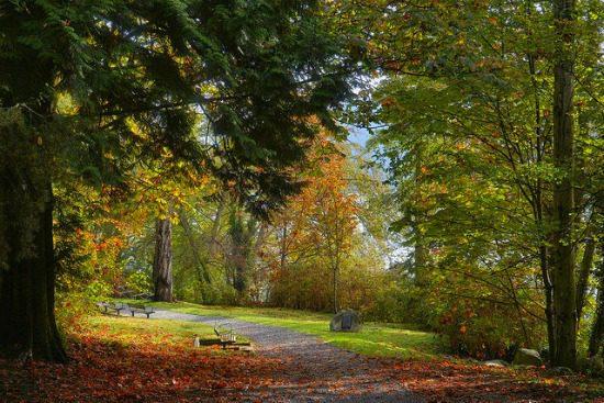 Cates Park   Photo: Valerie Sauve (Flickr)