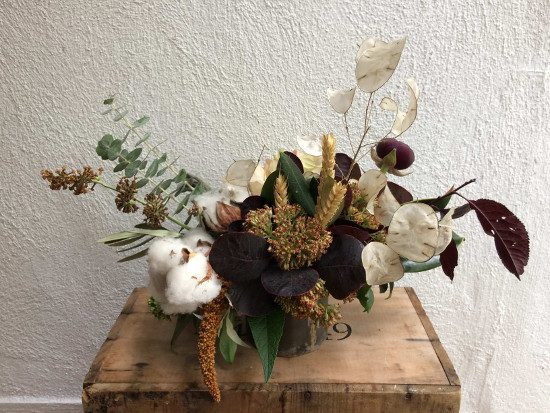 Beautiful Celsia Florist