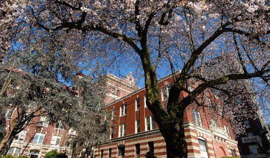 photo: Providence Health Care