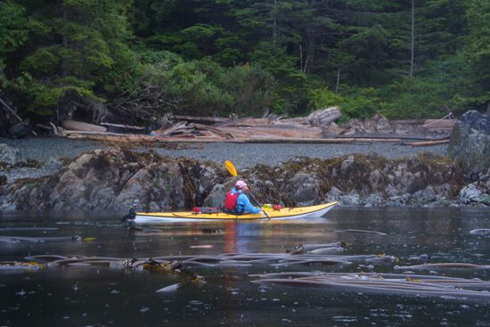 bc-marine-trail-discover-the-outdoors2