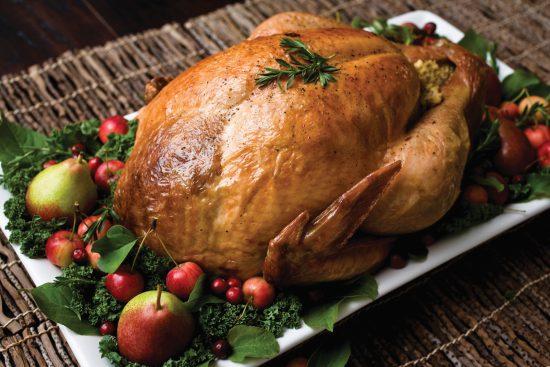 fairmont-turkey
