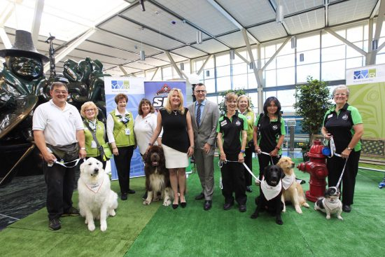 YVR Airport Therapy Dogs