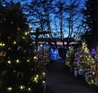 dundarave festival of lights 2017